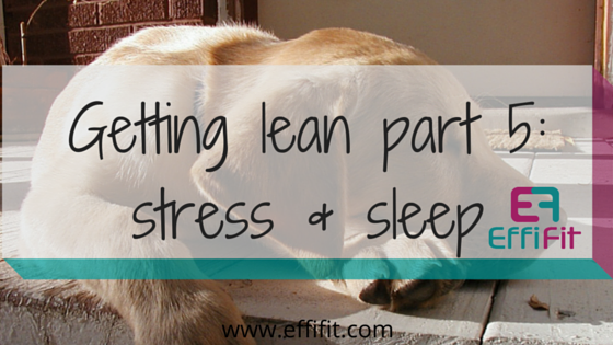 Getting lean and healthy part 5: stress management